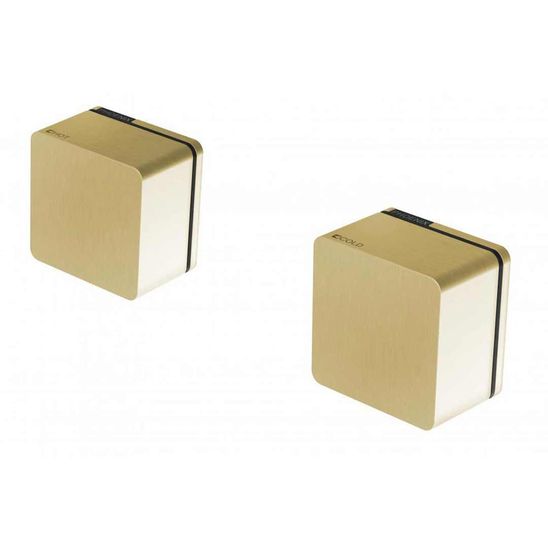 Pheonix ALIA Wall Top Assemblies Extended 110-0670-12 Brushed Gold