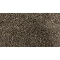 Hycraft Carpets Godfrey Hirst Charade Veneer Stipple SDN 38oz Carpet PLM