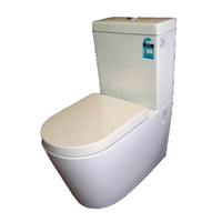 Castano Rossi Wall Faced Toilet Suite