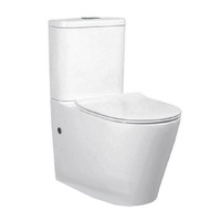Best BM Nano Glaze Toilet Suite Back to Wall Tornado T6088