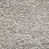 Signature Floors Wall to Wall Carpet Flooring SDN Heavy Duty Florian Champagne Spritz
