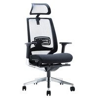 Style Ergonomics Executive Seating High Back Chair BIFMA Tested Black EVITA